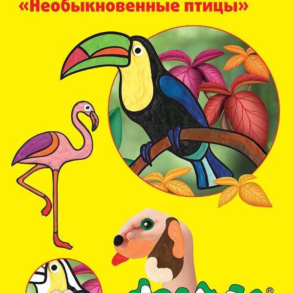 Раскраска пластилином «Необыкновенные птицы», (4 картинки), А4