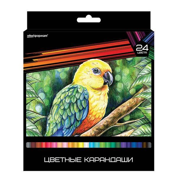 Карандаши цветные ДИКАЯ ПЛАНЕТА 24 цвета, повышенная мягкость, увеличенный диаметр