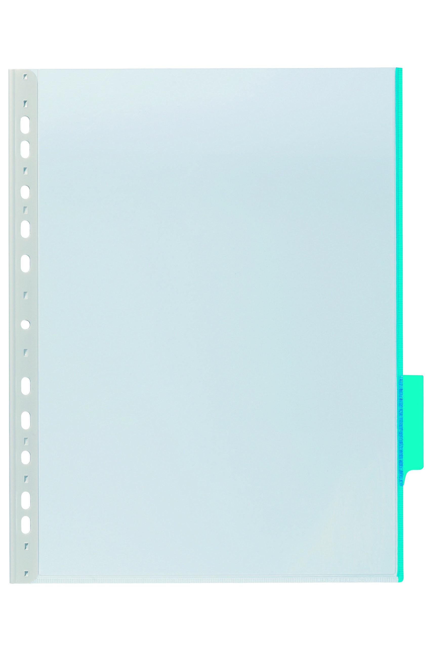 Дисплей настенный/настольный, DURABLE DIN, голубой, перфорация