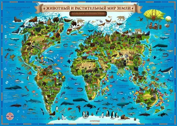 Карта Мира для детей ЖИВОТНЫЙ И РАСТИТЕЛЬНЫЙ МИР ЗЕМЛИ 101*69 см (с ламинацией)