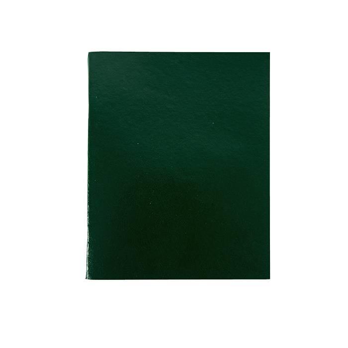 Тетрадь 96 листов LITE А5 в клетку, обложка из бумвинила, на скрепке, зеленая