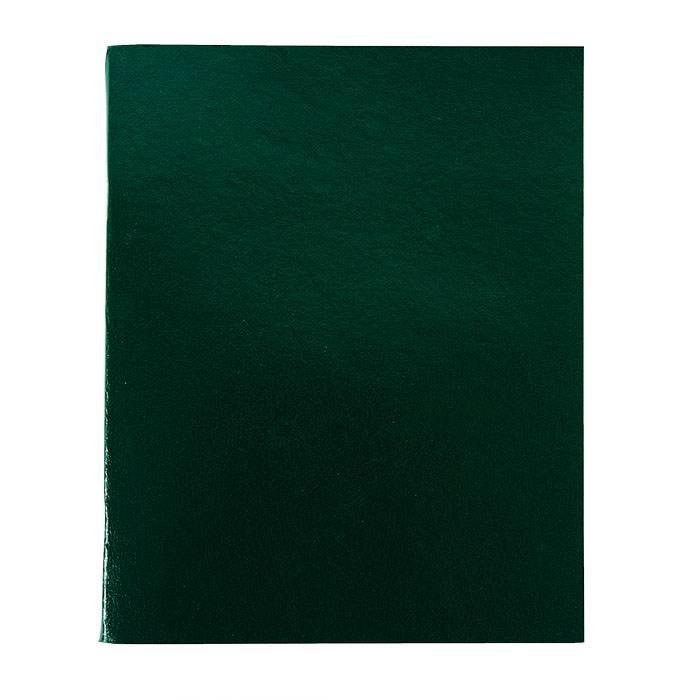 Тетрадь 96 листов LITE А4 в клетку, обложка бумвинил, на скрепке, зеленая