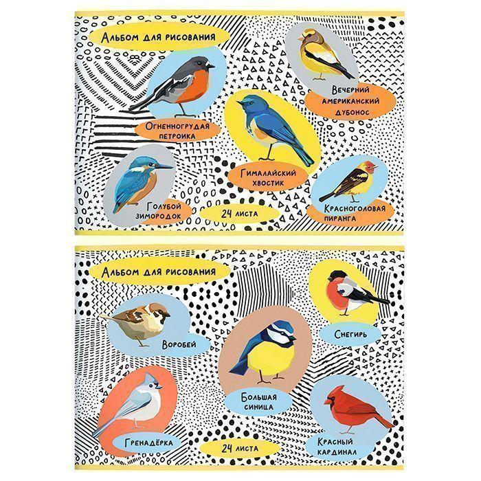 Альбом для рисования Schoolformat 24 л, А4, скрепка, ПТИЧИЙ МИР мелованный картон, ВД-лак