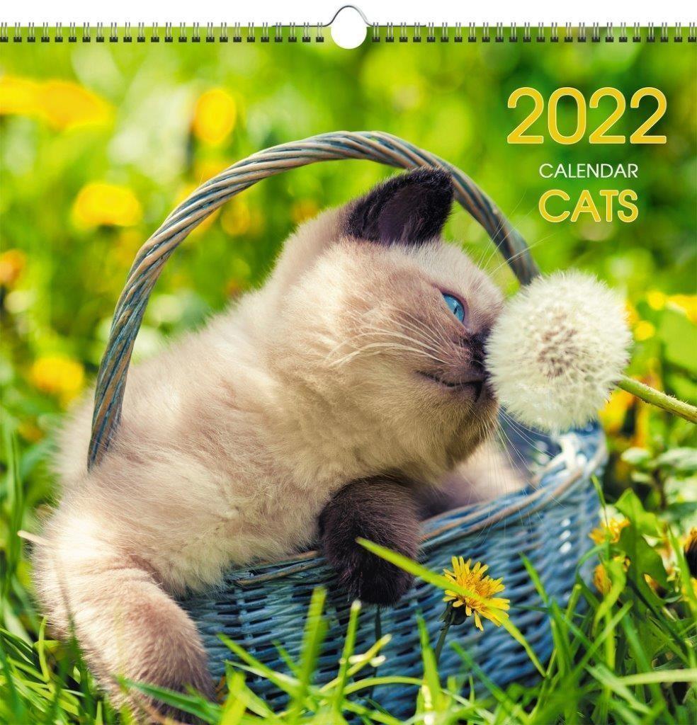 Календарь настенный квартальный 2022г. ДОМАШНИЕ ЛЮБИМЦЫ 320 х320 мм 6 листов 1 блок евроспираль с ригелем