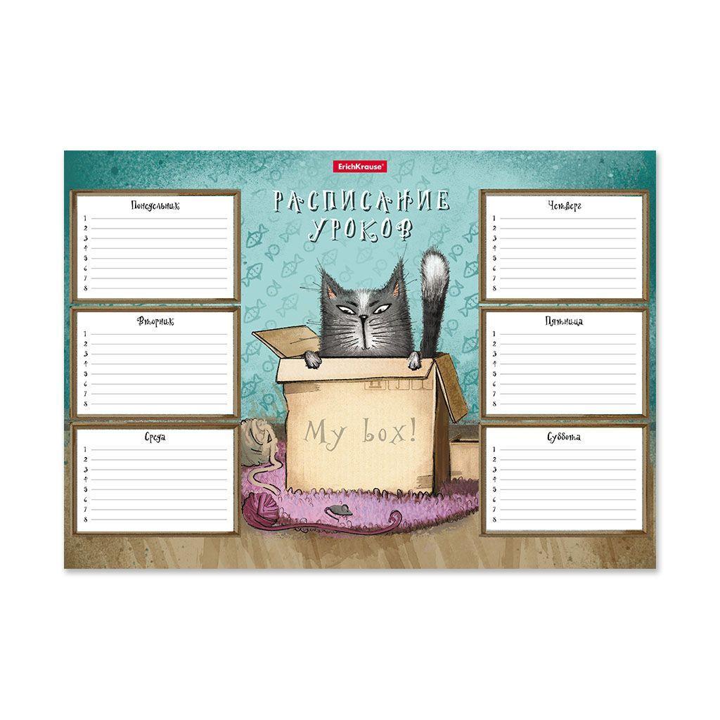 Расписание уроков ErichKrause® Cat & Box, А4